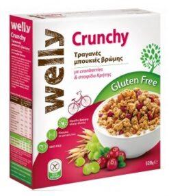 Δημητριακά με Cranberries & Σταφίδα Welly Χωρίς Γλουτένη glutenfree κοιλιοκάκη celiacshop.gr